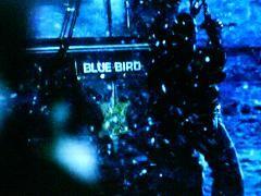 http://hajnalhasadas.hupont.hu/felhasznalok_uj/9/7/97813/kepfeltoltes/blue_bird_13-as_rendorors.jpg?79320480
